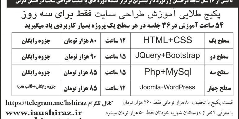 پکیج طلایی طراحی سایت در شیراز